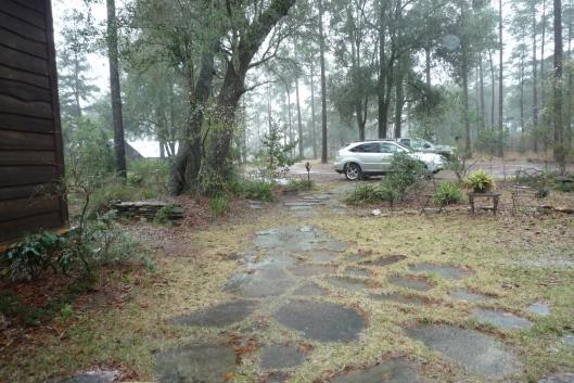 Totem Hall Entry Rain Study #3